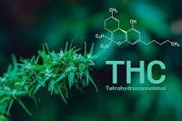El tetrahidrocannabinol puede prevenir el cáncer de colon