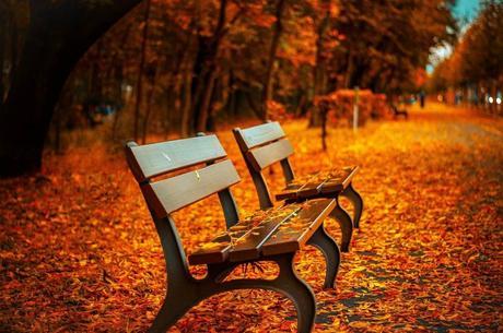 ¿Cómo subir las defensas en otoño de forma natural?