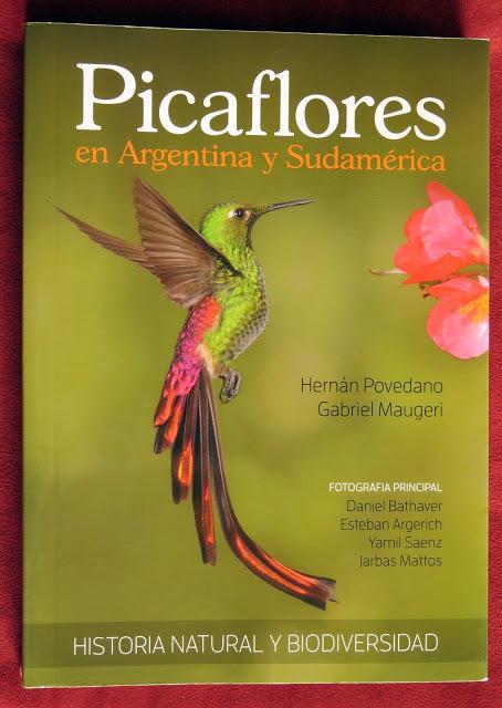 Picaflores en Argentina y Sudamérica