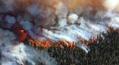 Incendios devastadores en Siberia, verano 2019