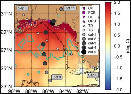 ¿A qué se debe que algunos huracanes aumenten rápidamente su fuerza justo antes de tocar tierra? Un fenómeno que es peligroso y difícil de predecir