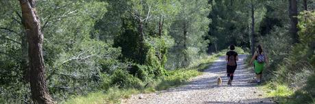 Senderismo y circulación por pistas forestales.