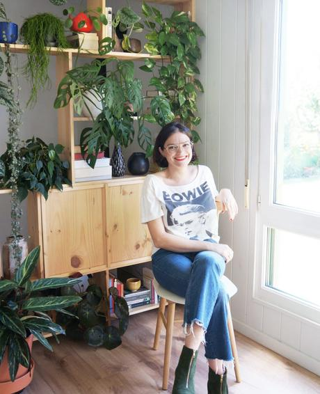 Cómo decorar tu casa con plantas