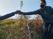 Recuperación bosques cantábricos