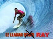 vamos surfear Liotta