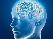cerebro encoge edad