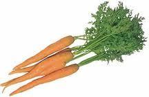 La zanahoria como planta medicinal