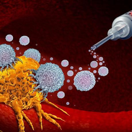 Entrenar glóbulos blancos para que ataquen a células tumorales