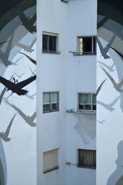 El espejo mudo / The mute mirrow