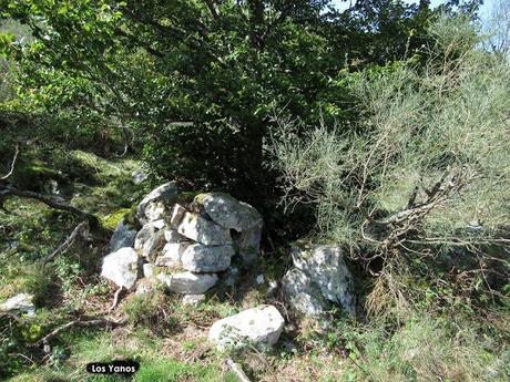 La Infiesta-La Canalina-Brañapiñueli-La Roza-Mericueria-La Carricera