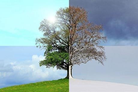 ¡Bienvenido el solsticio de invierno en nuestro hemisferio! Cuando las noches duran más tiempo que el día