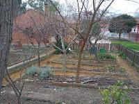 Arboreto junto al huerto