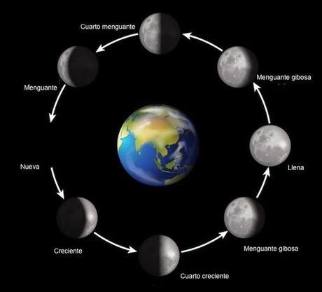 Los ciclos lunares con sus fases intermedias