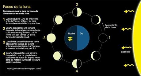 Ilustración de las fases lunares y explicación detallada
