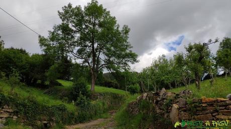Caminos por el barrio de Villarín, Trubia