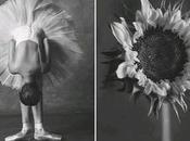 Bailarinas versus flores
