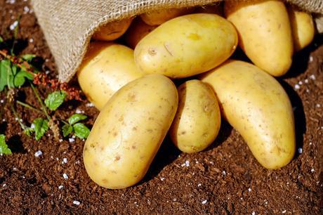 7 beneficios de la patata para la salud