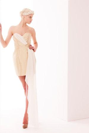 Erin Fetherston Fall 2011 RTW Strapless Dress With Train Profile Photo