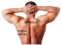 El tratamiento de la crisis conminuta de la columna vertebral
