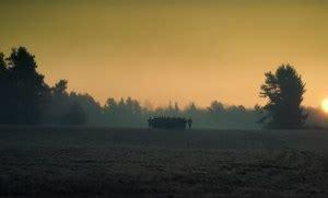 Nonton movie greenland (2020) streaming film layarkaca21 lk21 dunia21 bioskop keren cinema indo xx1 box office subtitle indonesia gratis online download. Nonton Film Snowden (2016) Sub Indo, Streaming Gratis ...