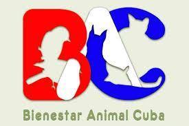 Autoridades del Ministerio de la Agricultura sostienen encuentro con protectores de animales #19feb
