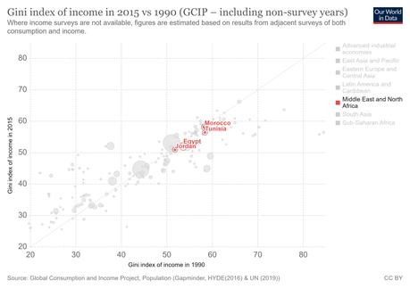 Neoliberalismo en oriente próximo y desigualdad.