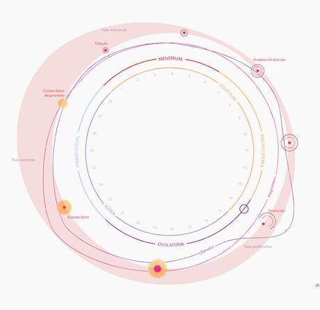 El ciclo menstrual y la piel.