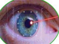 IVIC regenerara la articulación  mandibular y corneas con células madres