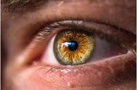 La enfermedad cardíaca se puede diagnosticar a través del ojo