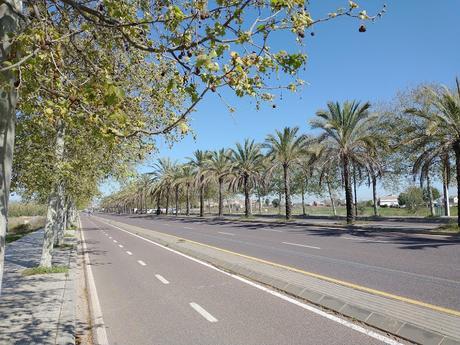 En València tenemos  16 rutas recomendadas para caminar, correr o hacer deporte y además con seguridad y con menos riesgo de contacto.