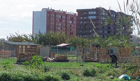 Chabolistas y  okupas  en València