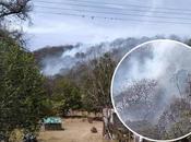 registra incendio forestal Sierra Álvarez