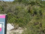 Ruta circular Fondo Vallgrassa Parc Garraf