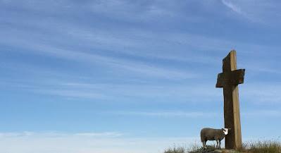 ¿Sonan as ovellas con xente con máscarilla?