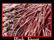 "canción: ""Pink frost"" (The Chills, 1984)"