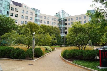Consejos para la Gestión de Empresas por Expertos del MIT