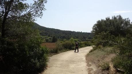 Ruta circular a la Torre de Montferri | Alt Camp (Tarragona)