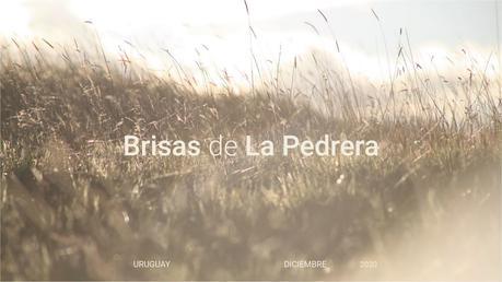 11_Brisas Apartments - La Pedrera - PaulaHerreroARQ.