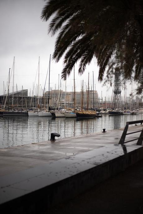 Un paseo cervantino por Barcelona