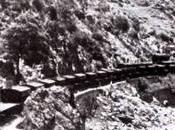 tren vino Sierra Norte