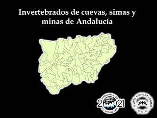 Actualizamos nuestros listados de Andalucía y Jaén