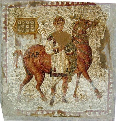 El cuidado del caballo en la antigua Roma