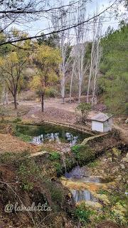 Font del Baladre-Fontanars