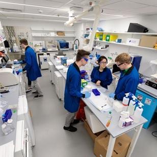 Científicos diseñan nanopartículas para atrapar y eliminar el coronavirus