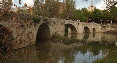 Puente Puentecillas en Palencia - Turismo en Palencia