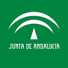 La Junta de Andalucía aprueba la nueva normativa tras el estado de alarma
