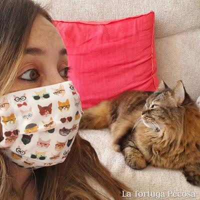 MASCARILLA CLEVER CATS