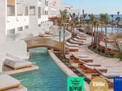 Hotels vuelve ganar Travelers Choice 2021 Tripadvisor
