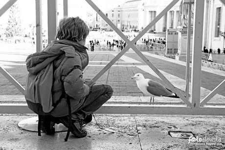 Niño con gaviota de San Pedro - Fotografía