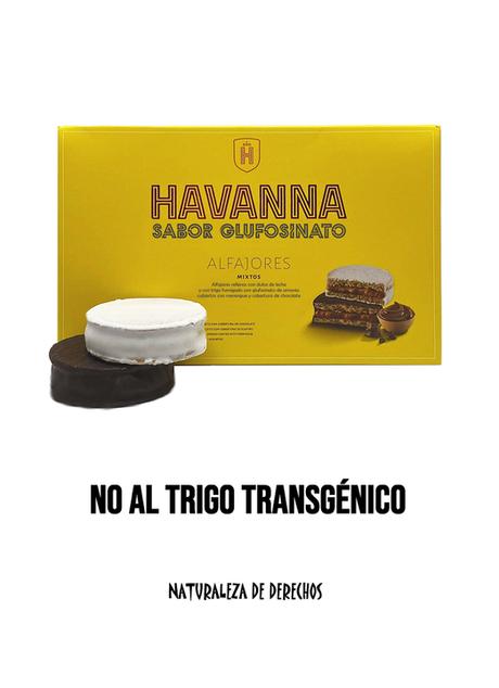 Argentina Transgenetizada